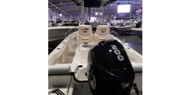 2019 Boston Whaler 19OUT