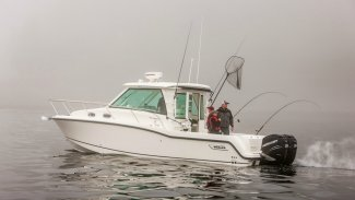 a boston whaler 315 conquest fishing boat in muskoka ontario.